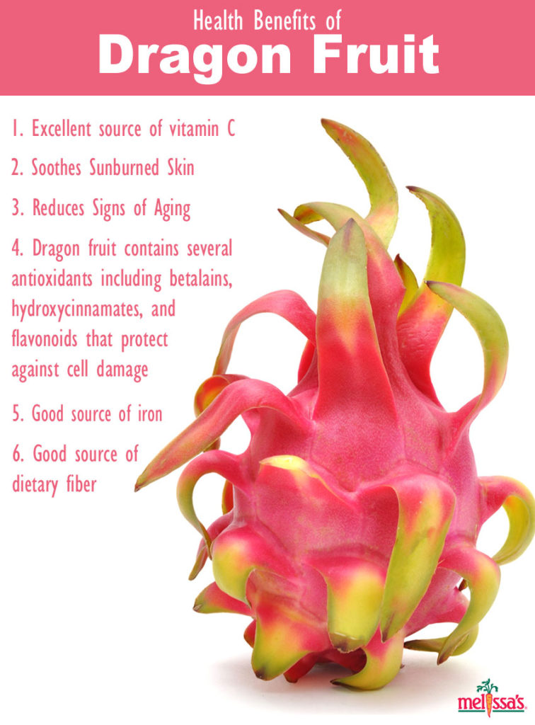 What is dragon fruit best dolphin